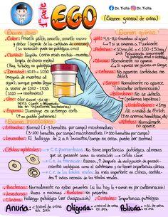 Shoulder Anatomy, Medicine Notes, Chemistry Lessons, College Notes, Med Student, Med School, School Hacks, Medical School, Nursing Students