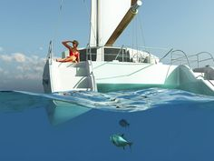 catamaran - Google Search