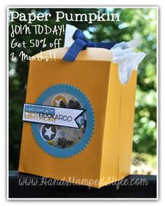 Yee-Haw Set with Paper Pumpkin Aug. kit that http://www.handstampedstyle.com put together to create adorable gift bag!