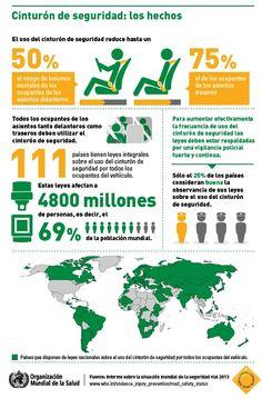 OMS | Infografías acerca de la situación mundial de la seguridad vial 2013