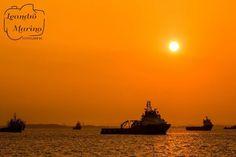 Um ótimo final de tarde!    #leandromarinofotografia #bestoftheday #picoftheday #photooftheday #fotododia #sunset #riodejaneiro #brasil #errejota #errejota021 #rj #pordosol #baiadeguanabara #instadaily #instalike #landscape #sunsetcolors #sunsetcoast #boats #boat #seaview - http://ift.tt/1HQJd81
