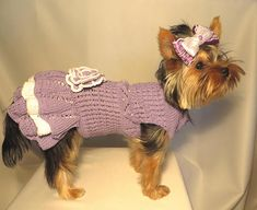 Dress for dogs. Clothes for dogs. This dress for the dog or cat is made of high-quality yarn 100% cotton.The dress has two colors of gentle lilac color and white. I dressed this dress with a knitted flower. This dress is in stock. Its size is XS. The volume of the chest is 26 cm.