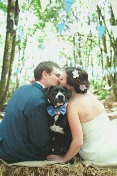 Wedding pictures with your dog