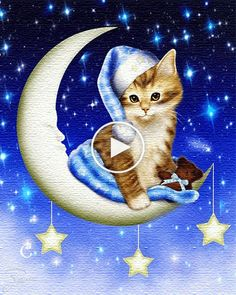 Good Night Greetings, Good Night Messages, Good Night Quotes, Good Night Friends, Good Night Wishes, Good Morning Good Night, Cute Cats And Kittens, Kittens Cutest, Animal Drawings
