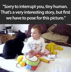 Gif  Sweet  Sorry to interrupt you, tiny human. May have to click through to original page for animation. Here... http://iwastesomuchtime.com/on/?i=76057