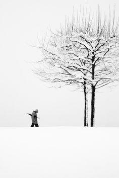 White, Silent Walk