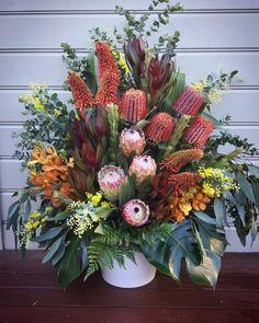 "54 Gostos, 1 Comentários - Liz O'Toole - florist (@lizotooleflowers) no Instagram: ""Funeral flowers for the chapel #nativeflowers #oldfriends #sydneyflorist #sydneyflowers…"""