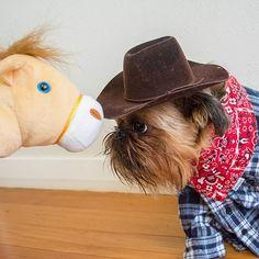 """""""Howdy, pawdner."""""""