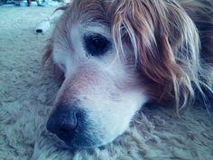 Annie<3