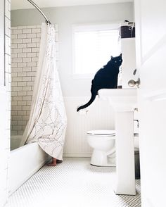 Such a pretty bathroom and cat   http://ift.tt/29ek3se