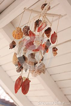 Sea shell decor by Apho, via Dreamstime