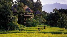 Exotic Four Seasons Resort in Chiang Mai