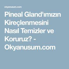 Pineal Gland'ımızın Kireçlenmesini Nasıl Temizler ve Koruruz? - Okyanusum.com