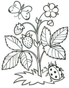 Spring Coloring Pages, Easy Coloring Pages, Flower Coloring Pages, Coloring Pages To Print, Printable Coloring Pages, Coloring Pages For Kids, Coloring Books, Art Drawings For Kids, Fabric Painting