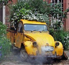 un vieux citroen avec un jardin de fleurs