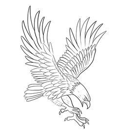 Tattoo Design Drawings, Bird Drawings, Tattoo Designs, Eagle Art, Black Work, Tattoo Stencils, Symbolic Tattoos, Outlines, Granada