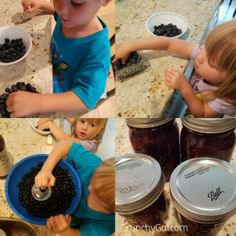 Blueberries for Sal was our book of the week for Before Five in a Row, and our Letter of the Week B. Here are the activities we did to correspond with it. Blueberries For Sal, Letter B, Dog Bowls, Blueberry, Activities, Blueberries