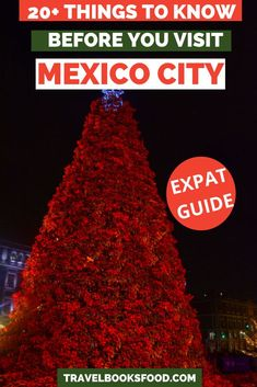 Visiting Mexico City, Visit Mexico, Mexico Vacation, Mexico Travel, Best Travel Guides, Travel Tips, Travel Destinations, Costa Rica Travel, Travel Couple