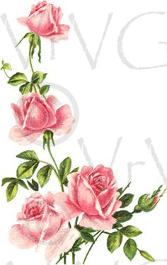 ShaBby Pink Rose Vine Flowers Digital Download by VrVGraphics