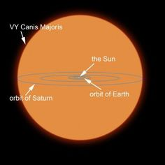 A diagram comparing the Sun to VY Canis Majoris Canvas Art - Ron MillerStocktrek Images (28 x 28)