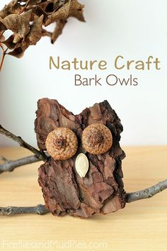 Bark Owl Nature Craft - Fireflies and Mud Pies With it being back to school time, I figure it's time to start looking for crafts for the kids still at home to do. Plus, this is absolutely adorable!!
