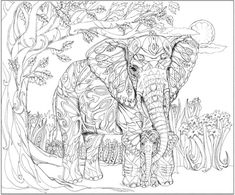 adult coloring pages nature | nature coloring pages for adults ...