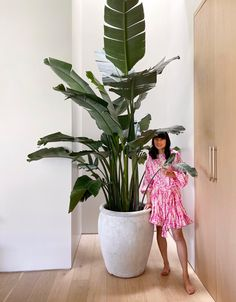 plant tips from a former anti-plant lady! - Oh Joy!