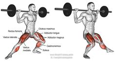 Barbell side lunge. A compound unilateral lower-body exercise. Target muscles: Quadriceps (Vastus Lateralis, Vastus Medialis, Vastus Intermedius, and Rectus Femoris). Synergistic muscles: Gluteus Maximus, Adductor Magnus, Adductor Longus, Adductor Brevis, and Soleus. Dynamic stabilizers: Hamstrings and Gastrocnemius.