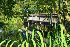 Wildfreizeitpark Oberreith - Kinda Mühldorf Am Inn, Trampoline, Plants, Little Children, Amusement Parks, Environment, Nature, Plant, Planets