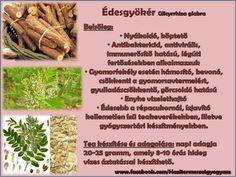 Életmód cikkek és képtár: Zöldség és gyümölcsök hatásai Asparagus, Vitamins, Spices, Healthy Eating, Herbs, Vegetables, Medicine, Sons, Clean Foods