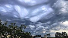"Asperatus Clouds over Cincinnati, Ohio by Ron Steele on August 3, 2015. Spectacular images of undulatus asperatus clouds were captured on Monday in Kentucky and southern Ohio and shared on social media.  Undulatus means wavy and asperatus translates as agitated or roughed, so the name is Latin for ""agitated waves."""