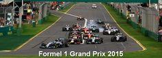FIA Formel 1 Grand Prix 2015 - Formel 1 Grand Prix 2015 #slotcar #autorennbahn