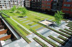 Masira Green Roof Park by Buro Sant en CO Landschapsarchitectuur
