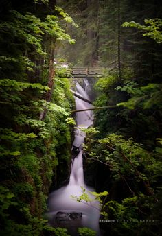 Sol Duc Falls, Olympic National Park, Washington ---- this is practically in my backyard :) Oh The Places You'll Go, Places To Travel, Places To Visit, Beautiful Waterfalls, Beautiful Landscapes, Washington State, Beautiful World, Beautiful Places, Amazing Places