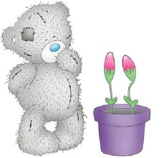 tatty teddy graphics | tatty teddy tatty teddy cartoon bear clip art images free to download