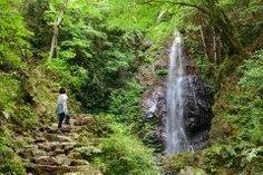 東京都の檜原村は以上もの滝がある滝パラダイスです 新宿から快速で時間というアクセスのいい場所にあるんですよ 中でもおすすめは払沢の滝ほっさわの滝 日本の滝百選にも選ばれている滝です マイナスイオンたっぷりで気持ちいいですよ tags[東京都]
