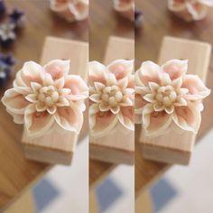 앙금꽃피우기~ 다알리아 dalhia 천연가루조색 naturalpowder bean paste flower class bean flower…