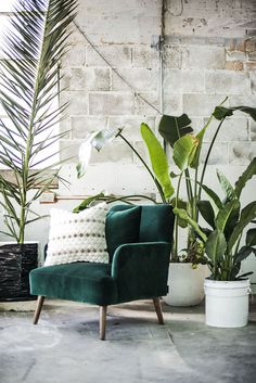 The Baker Chair by Arthur G in forest green Velvet. Manufactured to order in Melbourne, the Baker Chair is available in a range of upholstery options. arthurg.com.au ||