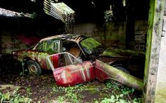 Back to nature: An eerie carpet of green moss and mould now covers this once impressive motor