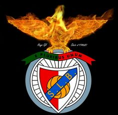Fenix no Benfica