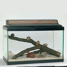 Land Hermit Crab Terrarium Habitat Kit (with prepaid coupon)
