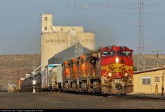 RailPictures.Net Photo: 799 BNSF Railway GE C44-9W (Dash 9-44CW) at Lind, Washington by M. S. Repp