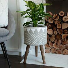 Plastic Planter Boxes, Plastic Pots, Fiberglass Planters, Fibre, Ceramic Planters, Clay Pots, Rustic, Tattoo, Plants
