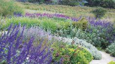Paisajismo naturalista | biodiversidad, Decoración, Diseño, Diversidad, Ecología, Jardines, Naturaleza, Semillas, Sustentabilidad