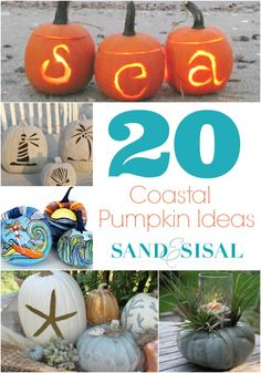 If you love beachy, coastal pumpkins then you will love these 20 Coastal Pumpkin Ideas that you can make for your self! Perfect for coastal fall decorating.