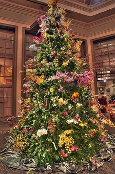 Daniel Stowe Orchid Christmas Tree