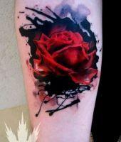 tatuaże róże 91773