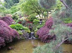 Ewa in the Garden: TOP 10 most beautiful pictures of Japanese Garden Japanese Garden Design, Chinese Garden, Japanese Gardens, Garden Images, Japanese Maple, Natural Garden, Dream Garden, Garden Bridge, Garden Gate
