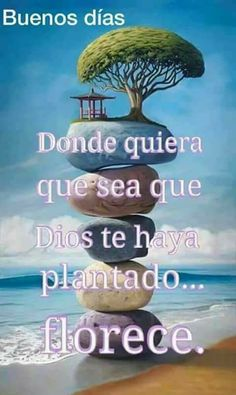 Good Day Wishes, Buenos Dias Quotes, Christ Quotes, Good Morning Good Night, Prayer Warrior, Gods Love, Positivity, Messages, Women's Fashion