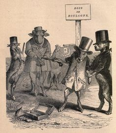 Public and Private Life of Animals (1877) | The Public Domain Review
